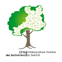 CETA des techniciens